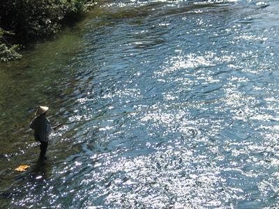 fishingyoshi.jpg